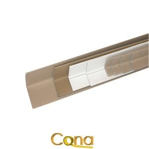 Angolari cartone2